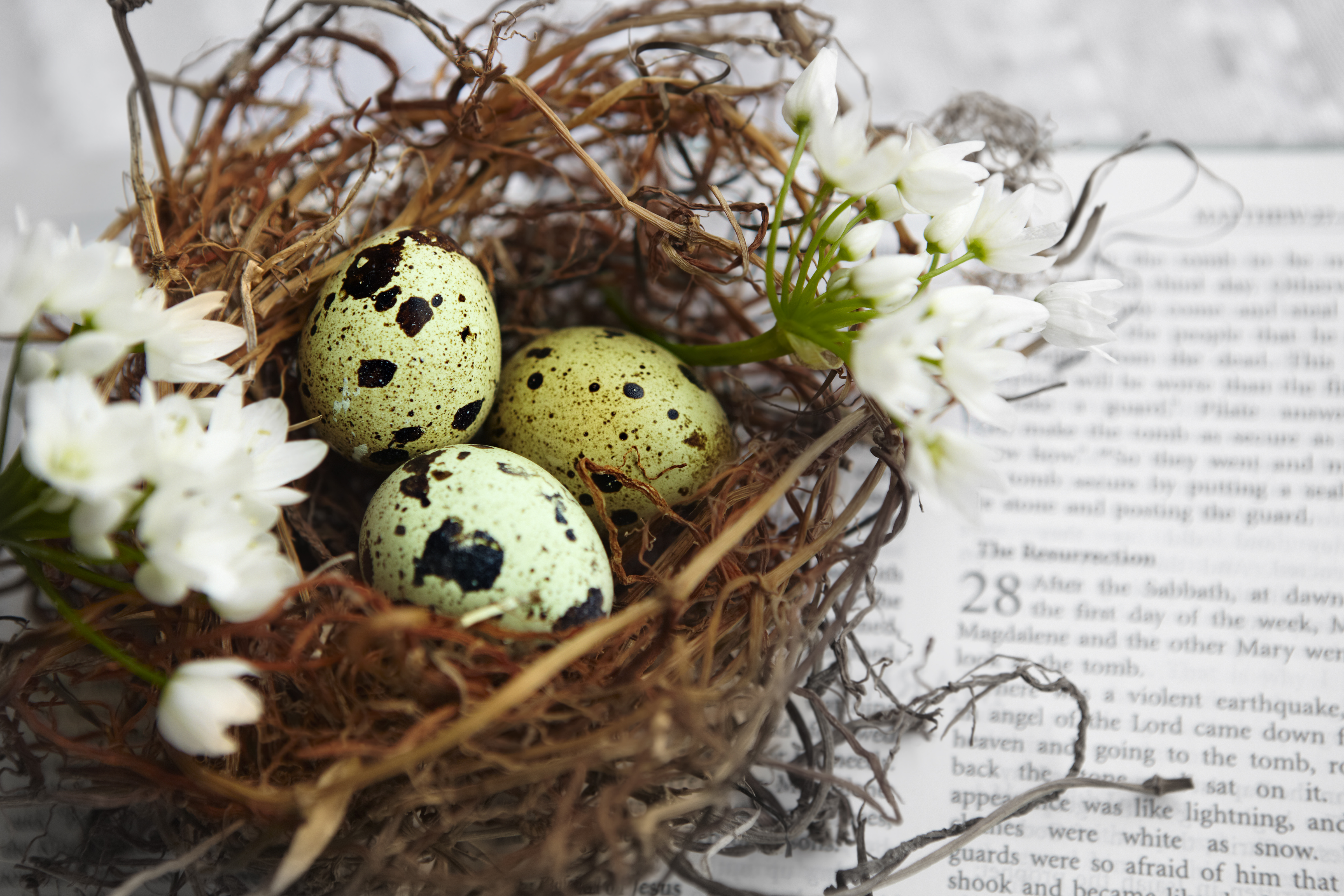 Does Easter Really Commemorate Jesus Christs Resurrection United