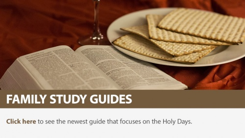Family Study Guides: Holy Days