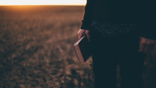 A person standing in a field holding a Bible while the sun is setting.