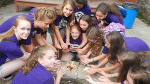 A girls' dorm started their own fire as part of the Amazing race activity at Camp Pinecrest.