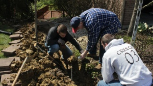 On Sunday afternoon young adults served at various members' homes as part of a service project.