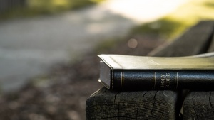 Bible laying on a park bench.