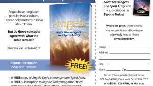 This is a graphic of the Angels newspaper insert advertisement.
