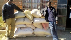 Food provided for brethren in Zimbabwe