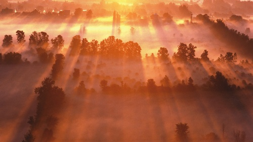 A foggy sunrise over farmlands.
