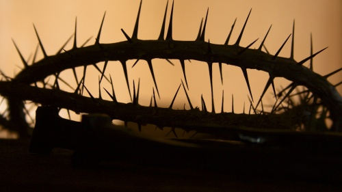 A crown of thorns.