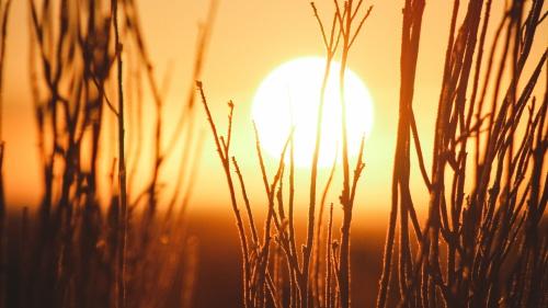 A sunset.