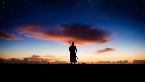 Photo illustration of a shepherd standing in field at dark.