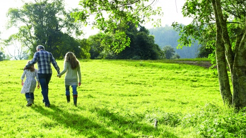 A family walking in a green pasture.