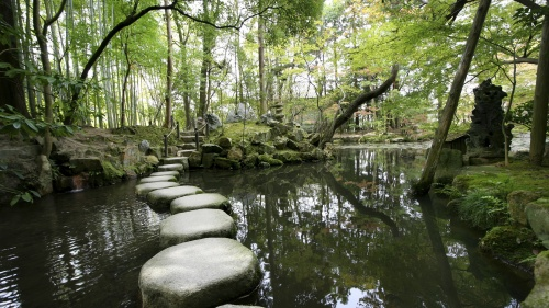 Stepping stones over a small pond.