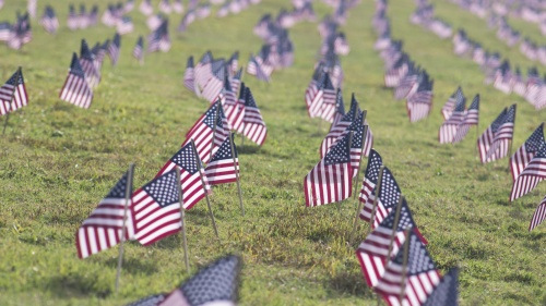 Small American flags stuck in the ground at a cemetery.