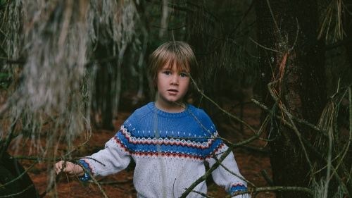 A little boy standing by trees in a forest.