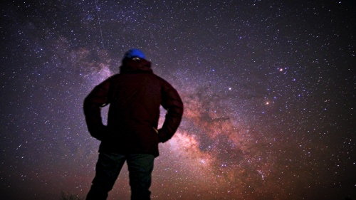 A person staring at the night sky filled with stars.