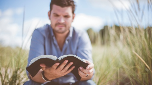A man reading a Bible in a grassy field.
