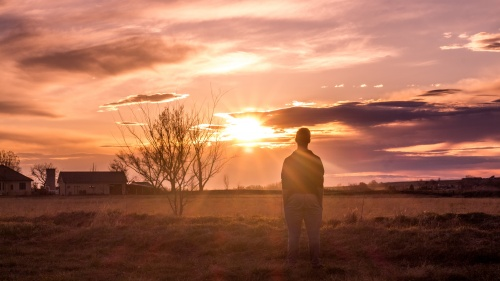 A man standing in a pasture looking at the setting sun.