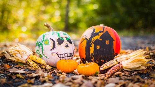 Halloween drawings on pumpkins.