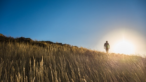 A man walking up a grassy hill with the bright sun in the background.