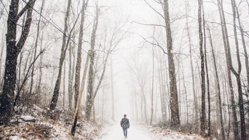 A person walking on a path in the woods covered with snow.