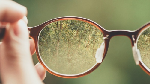 A person holding a pair of glasses.