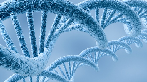 Blue DNA double helixes