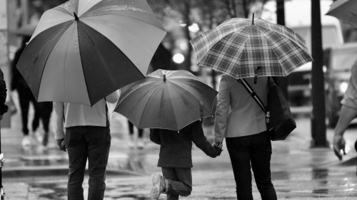 A family walking in the rain while holding umbrellas.