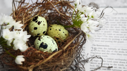 A nest of spotted Easter eggs on top of an open Bible.