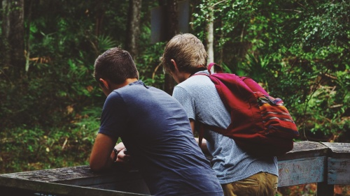 Two young boys together hiking in the woods.