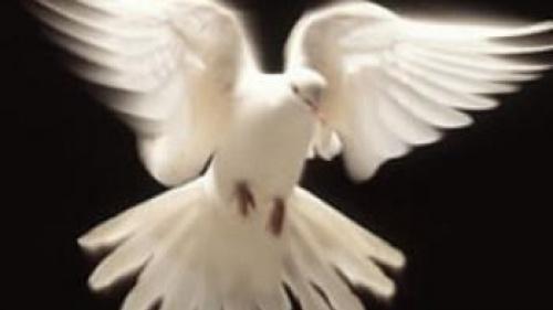 Know Jesus, Know Peace