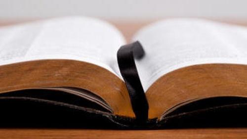 Life Lessons: Wisdom vs. Foolishness