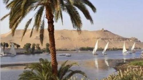 'No True Democracy Yet in Egypt': I'm Shocked!