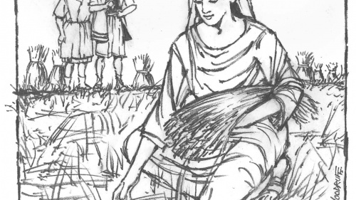 Illustration of Ruth picking grain.