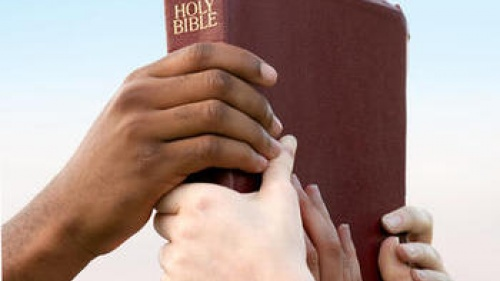 Hands of various races of people grabbing a Bible.