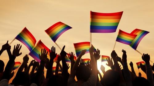 People waving gay pride flags.