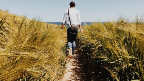 A woman walking on a path with tall grass around her.