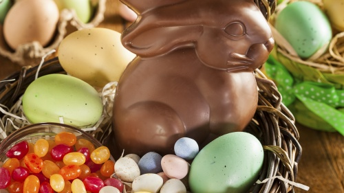 Chocolate Easter bunny in basket.