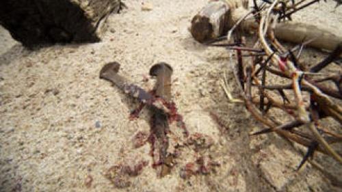 Who Really Killed Jesus?