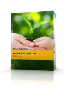 Looking at Creation: Days 1-2