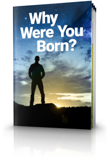 Why Were You Born?