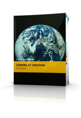 Looking at Creation: Overview