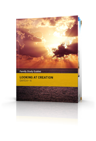 Looking at Creation: Days 4-6
