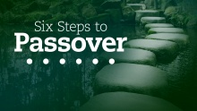 Six Steps to Passover