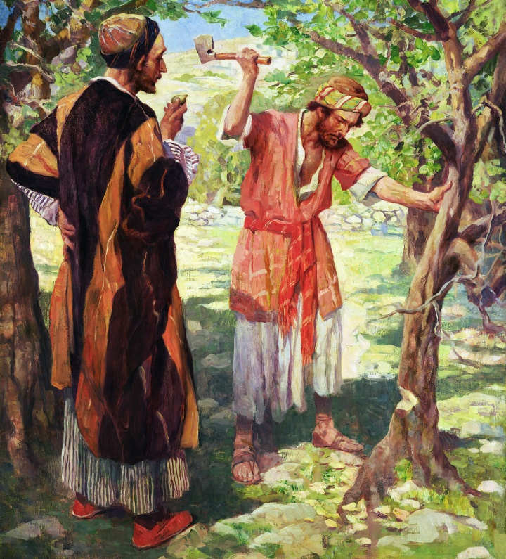 Lessons From the Parables: The Fig Tree: A Lesson in the