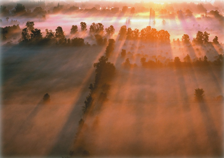 A sunrise over a field with a morning mist.