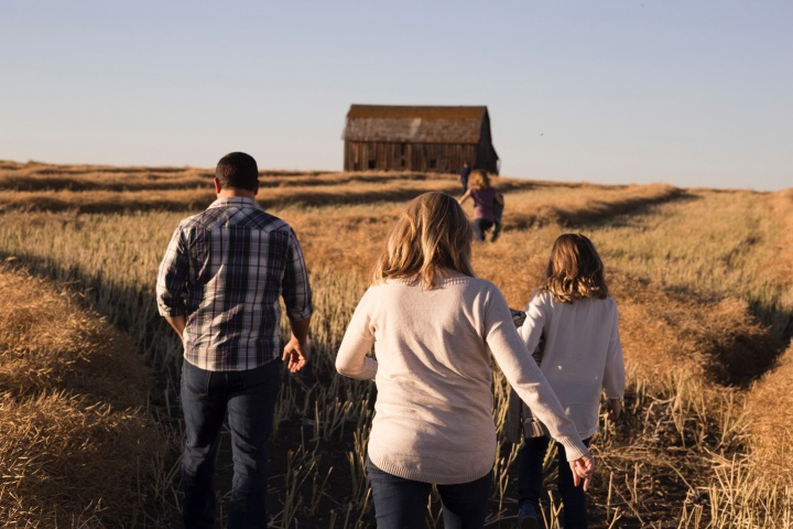 A family walking in a wheat field towards an old barn.