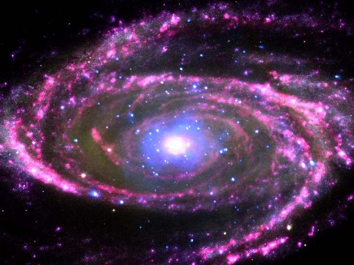 A galaxy of stars.