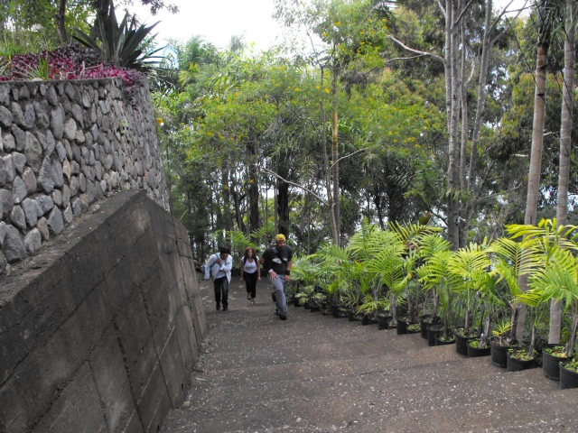 The 275 steps we had to face to get to our rented house overlooking Lake Atitlán in Panajachel, Guatemala.