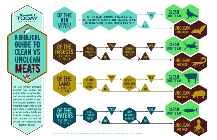 Infographic - Biblical guide to clean and unclean meats.