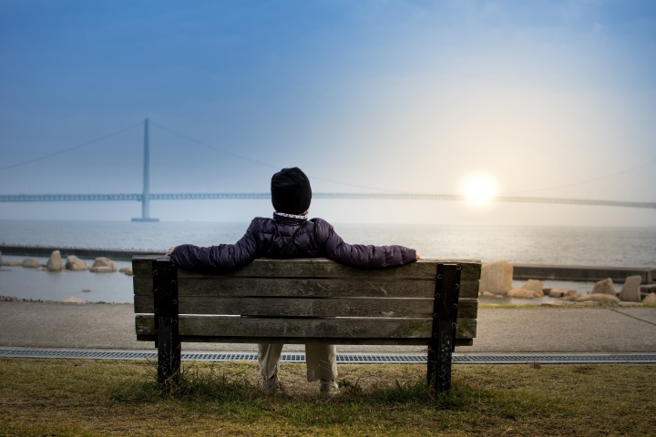 A person sitting on a bench overlooking a large bridge spanning a big body of water.