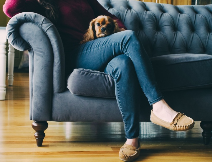 A woman sitting on a couch holding a small dog in her lap.