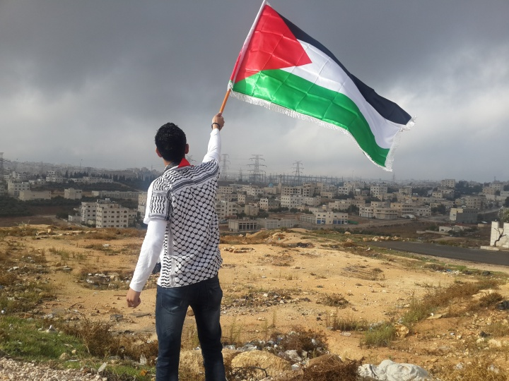 A young man holding a Palestinian flag.